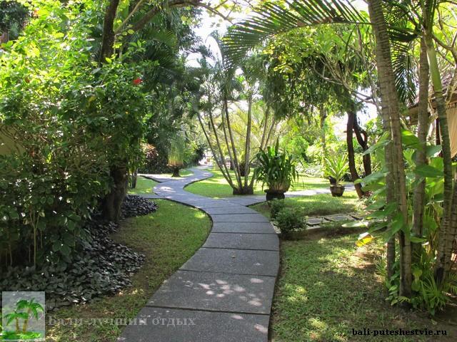 Бали зеленые дорожки