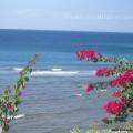 Амед побережье моря Бали