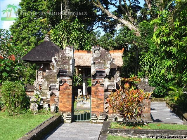 Зеленый остров Бали