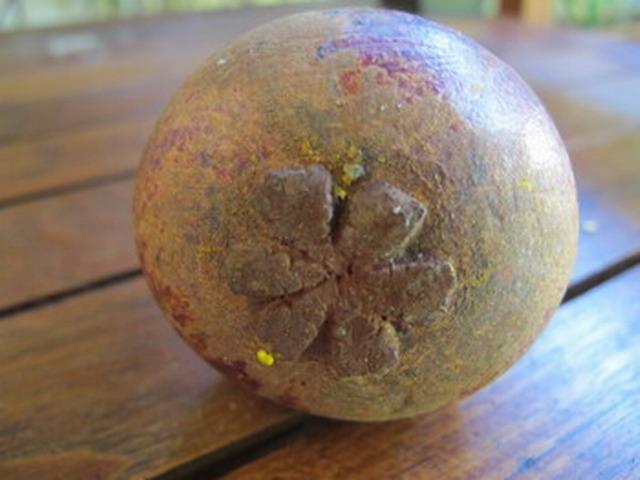 Мангустин фрукт
