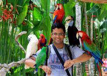 Красочные птицы с удовольствием фотографируются с посетителями