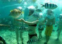 Прогулка по водой или seawalker на Бали