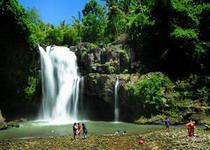Красивейший водопад на Бали
