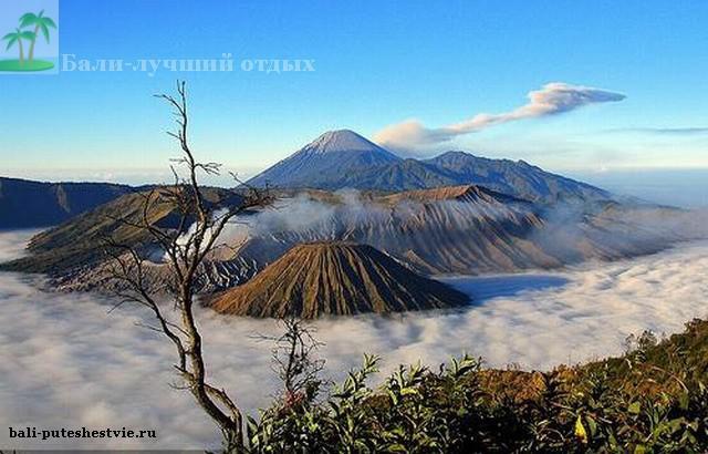 Вид на вулкан Бромо и другие