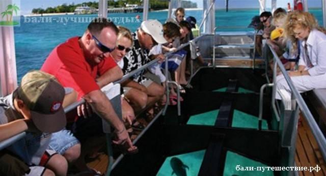Экскурсия на остров черепах