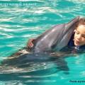 купание с дельфинами на Бали