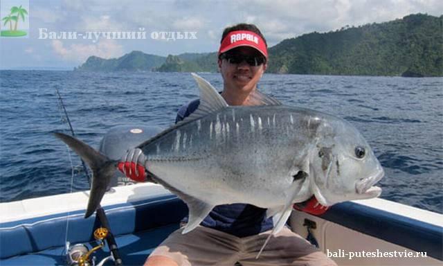троллинг на Бали