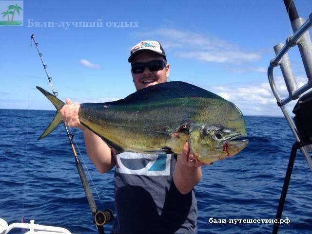 троллинговая рыбалка на Бали