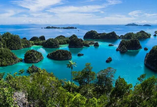 Экскурсия на остров Комодо