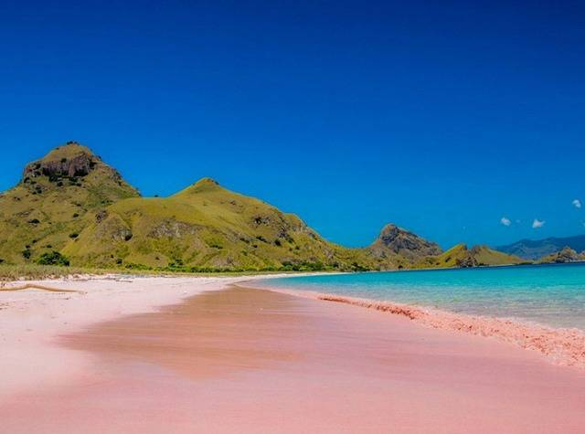 Розовый пляж на Комодо