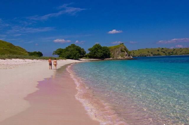 Розовый пляж острова Комодо