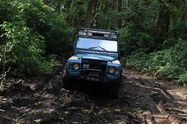 Сафари на джипах Бали