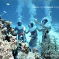 прогулки под водой