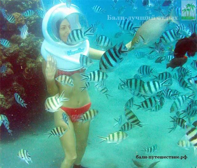 Прогулка под водой на Бали