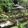 Храмовый комплекс Гунунг Кави на Бали