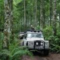 Джип сафари на Бали